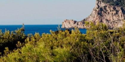 Yoga und Frühstück jeden Donnerstag im Hostal La Torre, es ist Zeit, sich verwöhnen zu lassen! Bewusste Ibiza-Ereignisse